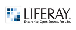 solvit-liferay-partner